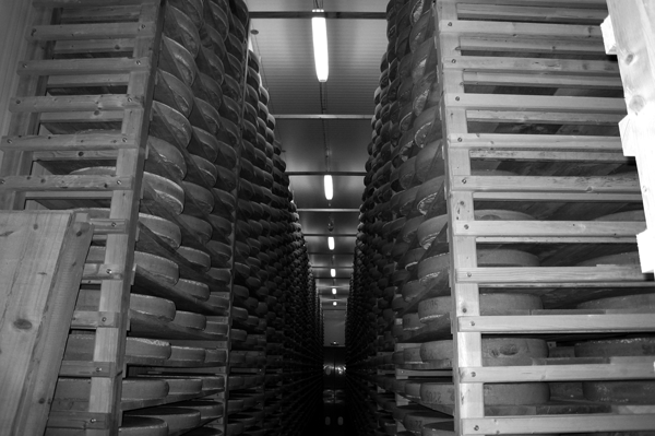 Référence F2A - Fromagerie Gaine